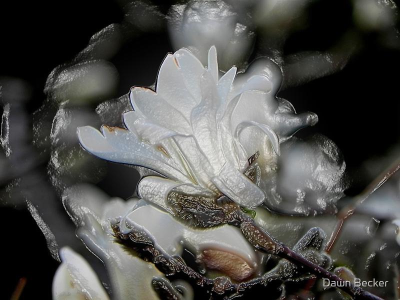 Tree Buds © by Dawn M. Becker