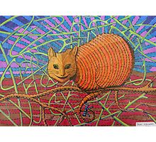 339 - CHESHIRE CAT - DAVE EDWARDS - COLOURED PENCILS - 2011 Photographic Print