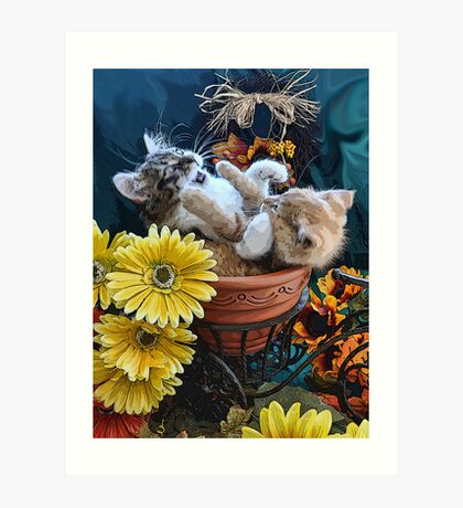 Venus & Di Milo ~ Cute Kitty Cat Kittens in a Flower Pot Playing in Fall Colors Art Print