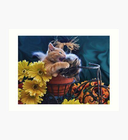 Di Milo ~ Psychocat ~ Angry Kitten Biting Kitty Cat Art Print