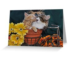 Venus & Di Milo ~ Foot in Mouth ~ Kitty Cat Kitten in Fall Colours Greeting Card