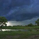 Thunderstorm by VallaV