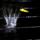 Splash by AnaBanana