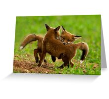 Red Fox Cubs Playing Greeting Card