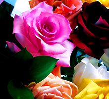"""Rainbow of Roses by Christine """"Xine"""" Segalas"""
