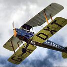 de Havillands D.H. 82 Tiger Moth by Clive