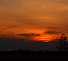 Sunset in May by Sheryl Gerhard