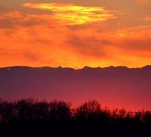 Spring Sunset by Sheryl Gerhard