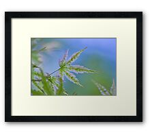 The monday blues Framed Print