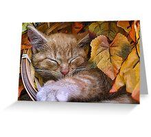 Di Milo ~ Cute Kitty Cat Kitten in Decorative Fall Colors Greeting Card