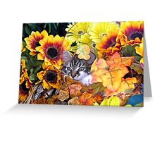 Venus ~ Hidden ~ Fall Kitten Greeting Card