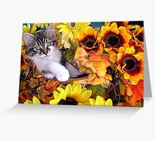 Venus ~ Hanging Out ~ Cute Fall Kitten Greeting Card