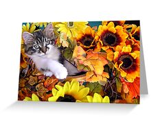 Venus ~ Hanging Out ~ Cute Fall Kitten Greeting Card