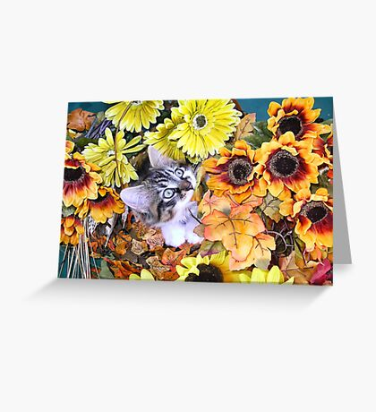 Venus ~ Leafy Vegetables ~ Kitty Cat Kitten Chewing a Fall Leaf ~ Autumn Colors Greeting Card