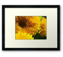 Yellow Bright SunFlower Garden Floral Baslee Troutman Framed Print