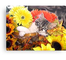 Venus ~ Dreamy ~ Fall Kitty Cat Kitten in Flower Basket Canvas Print
