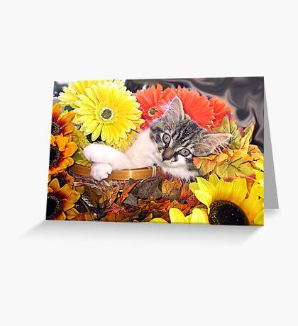 Venus ~ Dreamy ~ Fall Kitty Cat Kitten in Flower Basket Greeting Card