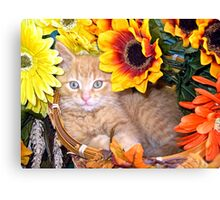 Di Milo ~ Sunflower Basket ~ Cute Kitty Cat Kitten Canvas Print