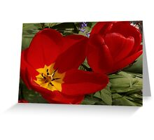 two 'lips opened and closed Greeting Card