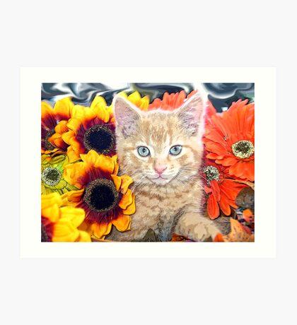 Di Milo ~ Gaze ~ Fall Kitty Cat Kitten in Gerbera Flowers Art Print