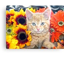 Di Milo ~ Gaze ~ Fall Kitty Cat Kitten in Gerbera Flowers Canvas Print