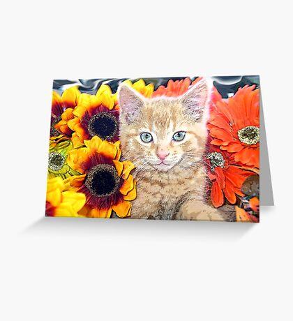 Di Milo ~ Gaze ~ Fall Kitty Cat Kitten in Gerbera Flowers Greeting Card