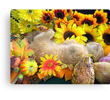 Di Milo ~ FAll Autumn Harvest ~ Tabby Kitty Cat Kitten Canvas Print