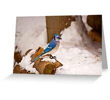 Winter Blue Greeting Card