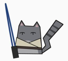 Skywalker Cat Kids Clothes