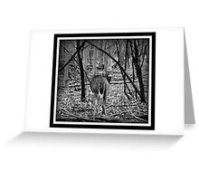 Doe In B&W Greeting Card