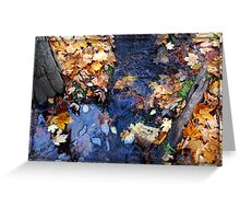 Leaves Under Water Greeting Card