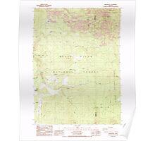 USGS Topo Map Oregon Brown Mountain 279157 1988 24000 Poster