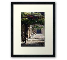 """""""Spanish Arbour"""" Framed Print"""