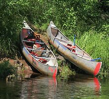 Two Canoes On The Shore by Gary Horner