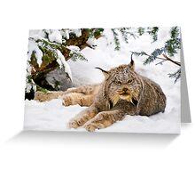 Yet more Yeti! Greeting Card