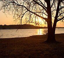 Lakeside Dusk by sillicus