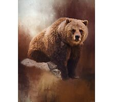 Great Strength - Grizzly Bear Art Photographic Print