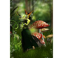 Midnight in faun's dreams Photographic Print