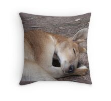 Aussie Icon - Buck Throw Pillow