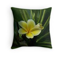 Lemon Drop Frangipani - Essence Throw Pillow