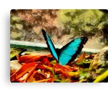 Monarch in Blue Canvas Print