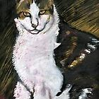 Marilyn's Cat by Penny Lewin - Hetherington