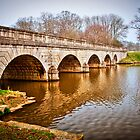 Bridge at Virginia Water, Windsor, UK. by DonDavisUK