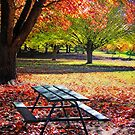 Autumn Picnic by Kym Howard