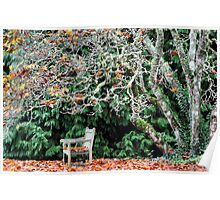 Sit & Watch the Seasons Change - Mt Wilson NSW Poster