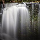 horseshoe falls by col hellmuth
