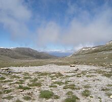 Mt Kosciusko by Jane65