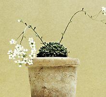 Pastel in the Garden by Anne Staub