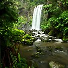 Hopetoun Falls, Great Otway National Park by Jason Asher