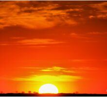 """""""So ends another day in Africa"""" - Kalahari sunset - South Africa by Sandy Beaton"""